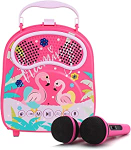 N\A Karaoke Machine for Kids with 2 Microphones Portable Karaoke Speaker for Children Rechargeable Singing Speaker for Toddler Connected with Bluetooth USB TF Card Birthday Gift for Boys Girls