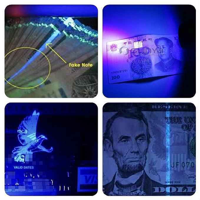 UV BLACK-LIGHT linterna Pet orina detector. LED ultrabrillante inalámbrico buscador de manchas para detectar seco perro gato y mascotas orina/Pee. granpawsâ ...