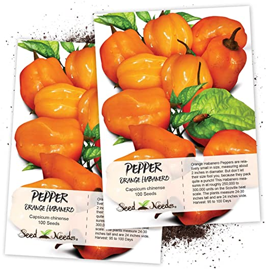 10 seeds Homegrown Capsicum Chinense Habanero Guadeloupe seeds 152