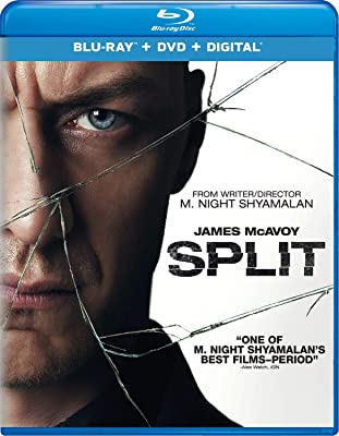 Split 2016 480p BluRay Dual Audio Hindi ESubs 300MB