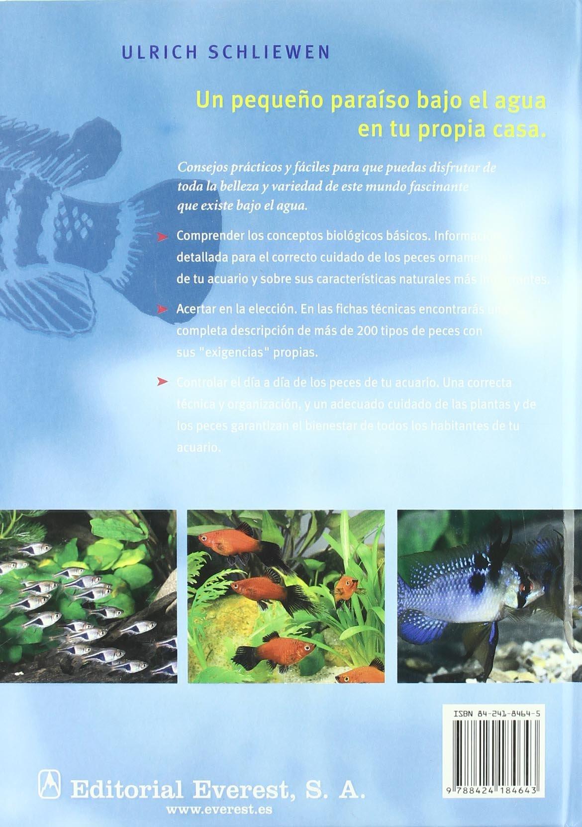 Acuarios: Un pequeño paraíso bajo el agua. Cuida tu mascota: Amazon.es: Schliewen Ulrich, Holzner Renate, Berasaín Villanueva Ambrosio: Libros