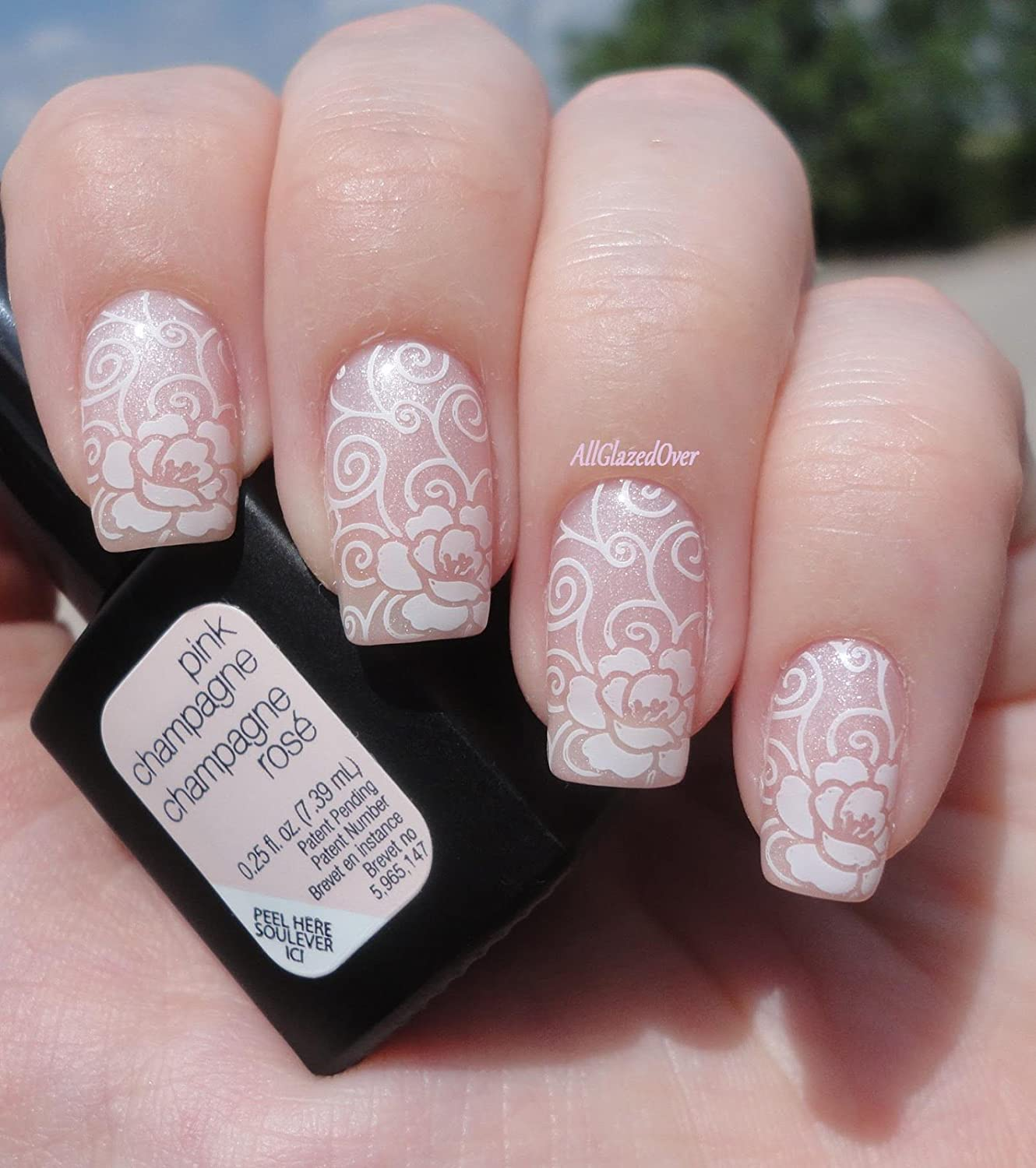 Amazon Pueen 2015 Nail Art Stamping Plate Celebration