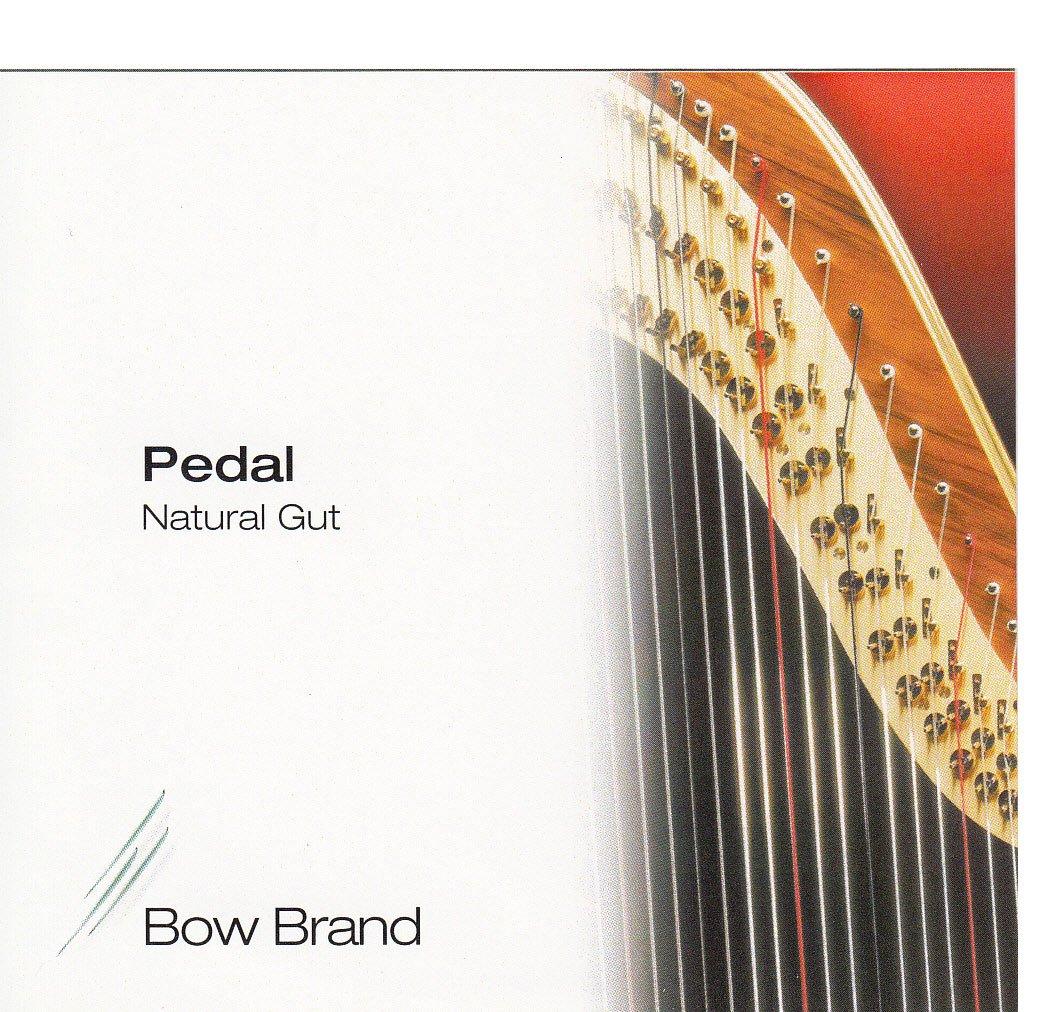 Salvi Harps ペダルハープ 交換用弦 7本セット ナチュラルガット No.29~35  5th Oct(E~F) セット弦 5th Oct B01HRR4RUW