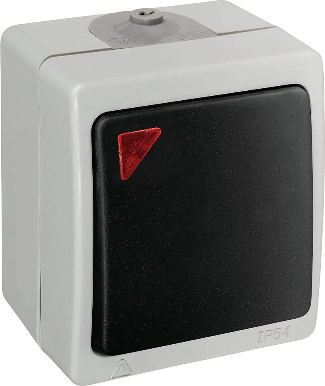 rot leuchtende Kalotte grau Modell Pacific Aufputz Feuchtraum Kontrollschalter//Ausschalter beleuchtet IP54