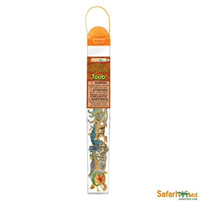 Safari Ltd Feathered Dinos TOOB: Toys & Games [5Bkhe0306526]