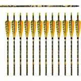 """Albertu 31"""" Carbon Arrows Shaft Hunting Arrows Archery with Turkey Yellow Printed Feathers & Screw-In Field Arrow Tips"""
