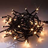 Indoor or Outdoor LED fairy string lights with 48 Warm White LEDs on green cable. Comes with built-in timer and remote control by Qbis