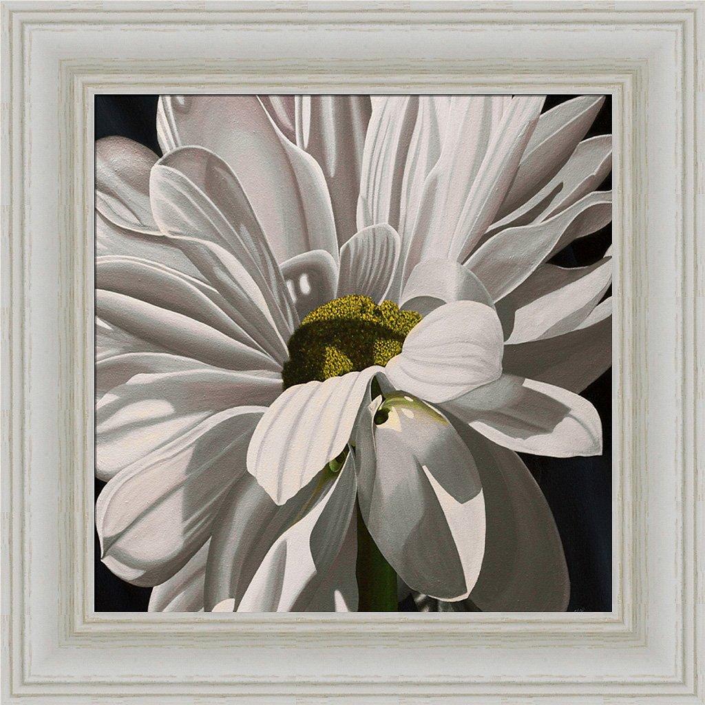 Amazon Black Tie Daisy Ellen Macioce Flower Painting Framed