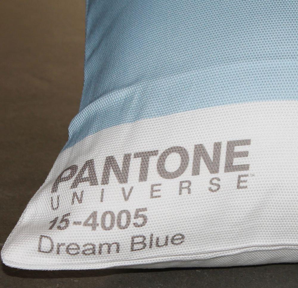 Pantone - Funda de cojín: Amazon.es: Hogar