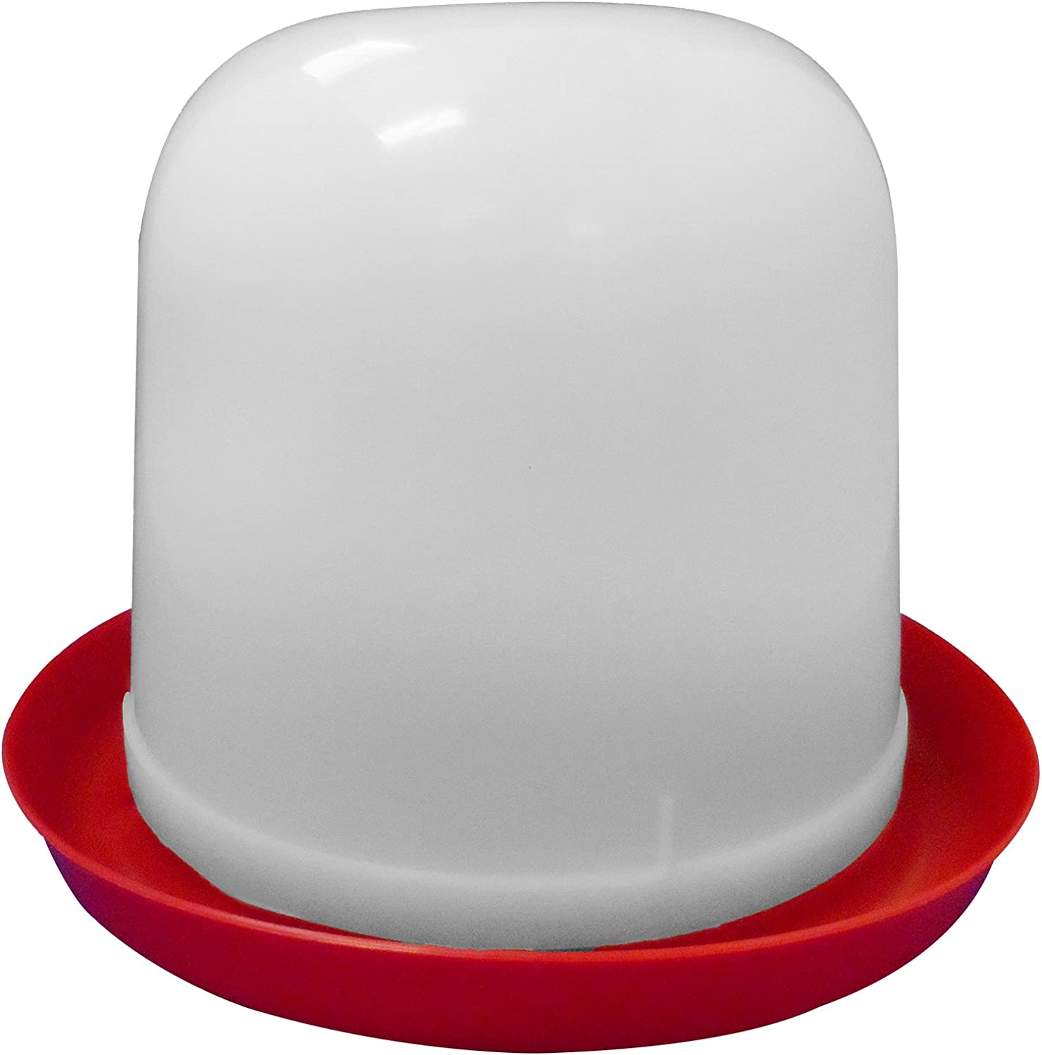 Wolseley 1.5LT Red /& White PLASTIC DOME POULTRY DRINKER Anti Perch Ideal for up to 40 Chicks AND Tigerbox/® Antibacterial Pen.