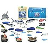 立体図鑑リアルフィギュアボックス ソルトウォーターフィッシュボックス (日本の海水魚)