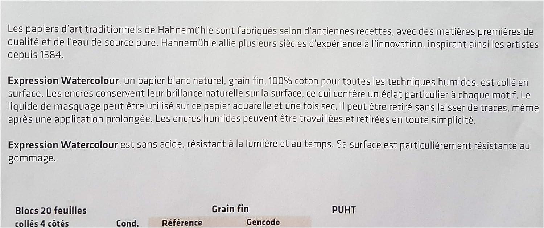 Hahnem/ühle Expression Bloc aquarelle 20 feuilles 300 gr,30 x 40cm 100/% coton,Moulin du coq made in Germany