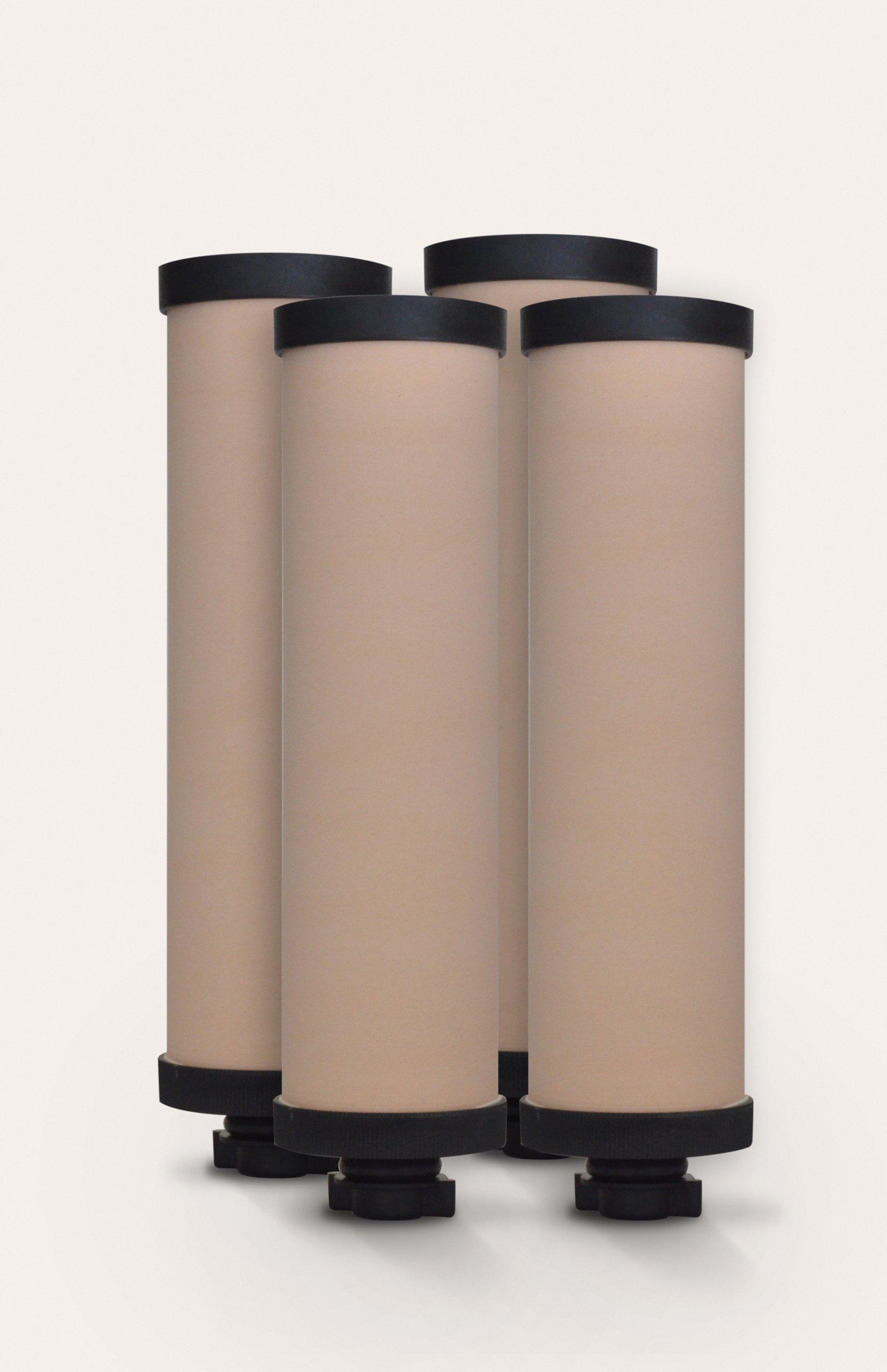 AquaRain 4-Pack of Ceramic Elements