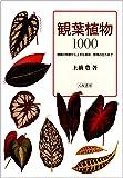 観葉植物1000―種類の特徴から上手な栽培・管理の仕方まで