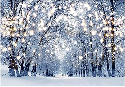 Amazon Com Funnytree 7x5ft Winter Scene Backdrop Wonderland Snowflake Photography Background Bokeh Glitter White Snow Forest Christmas Party Decoration Tree Landscape Kids Portrait Photobooth Photo Studio Props Camera Photo