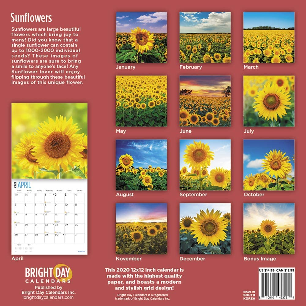 16 Month 12 x 12 Inch Large Beautiful Summer Flower 2020 Sunflowers Wall Calendar with 324 Included Stickers by Bright Day