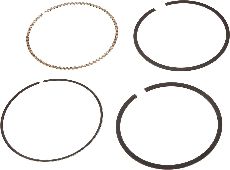 Hastings 2M4880S020 Single Cylinder Piston Ring Set