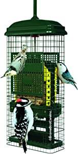 Squirrel Buster Suet Squirrel-proof Suet Bird Feeder w/2 Suet Cake Trays, 2 Crumb Ports, Mess-free Suet Loading,Green