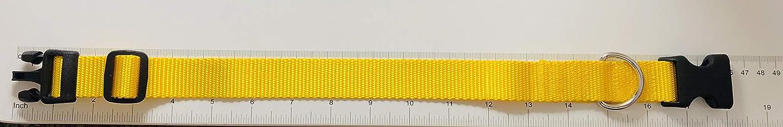 Yellow 1 inch Nylon Tag Collar