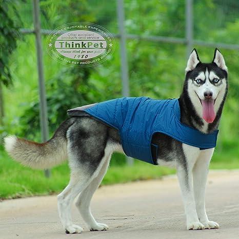 ThinkPet AdventureMore Abrigo Perro de BlackShark Chaqueta Impermeable Perro Reflectante Chaleco Perro de Aventura Sudadera Perro