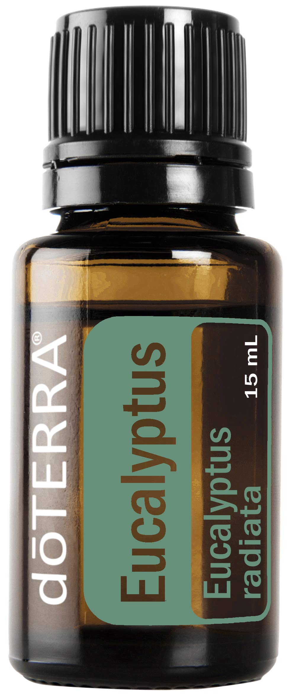doTERRA - Eucalyptus Radiata Essential Oil - 15 mL