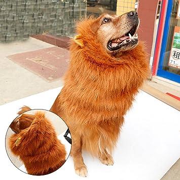 Disfraz de león para mascotas, disfraz de león con orejas para perro y gato,