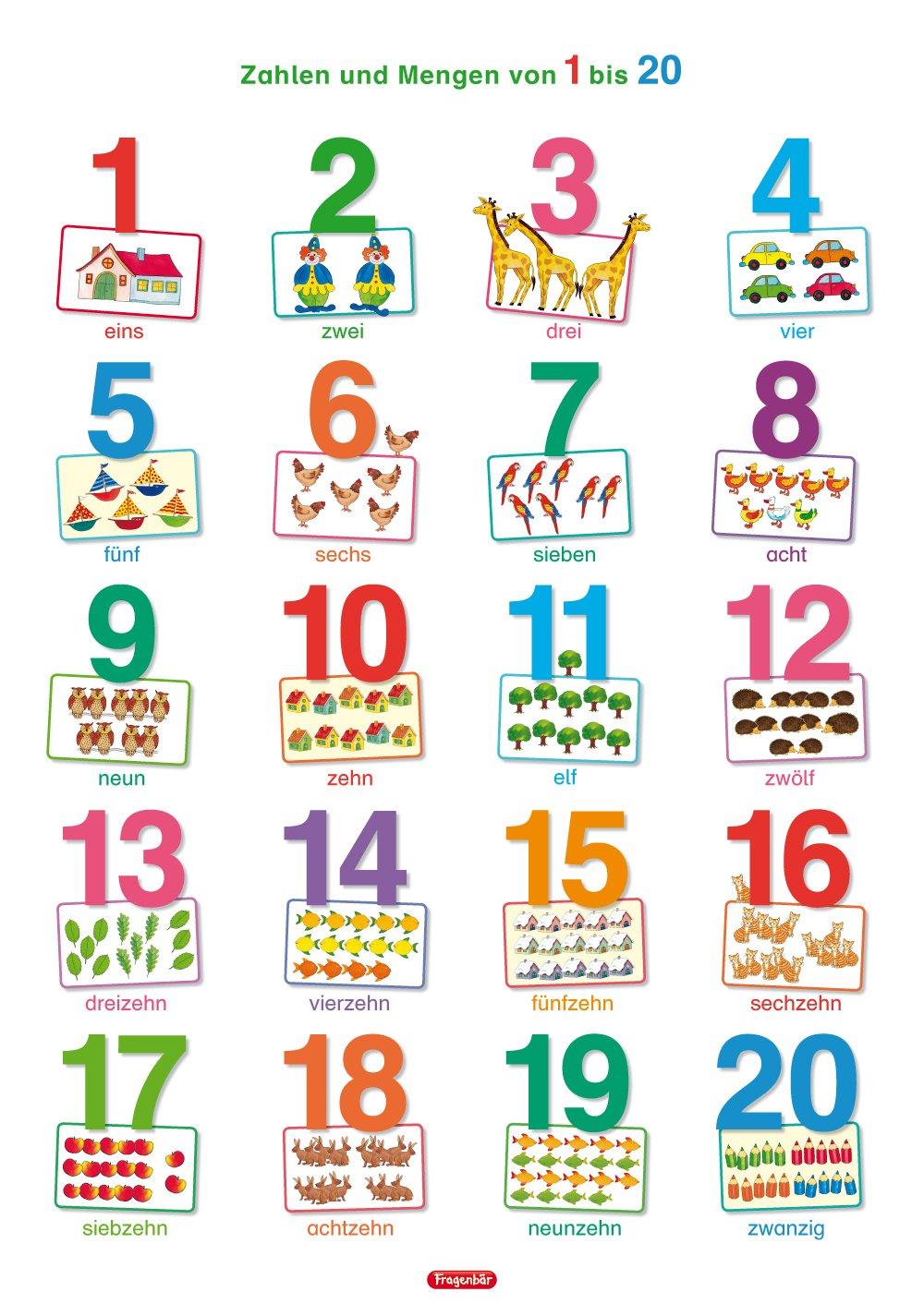 Fragenbär-Lernposter: Zahlen und Mengen von 1 bis 20, L 70 x 100 cm: Gerollt, matt folienbeschichtet, abwischbar (Lerne mehr mit Fragenbär)