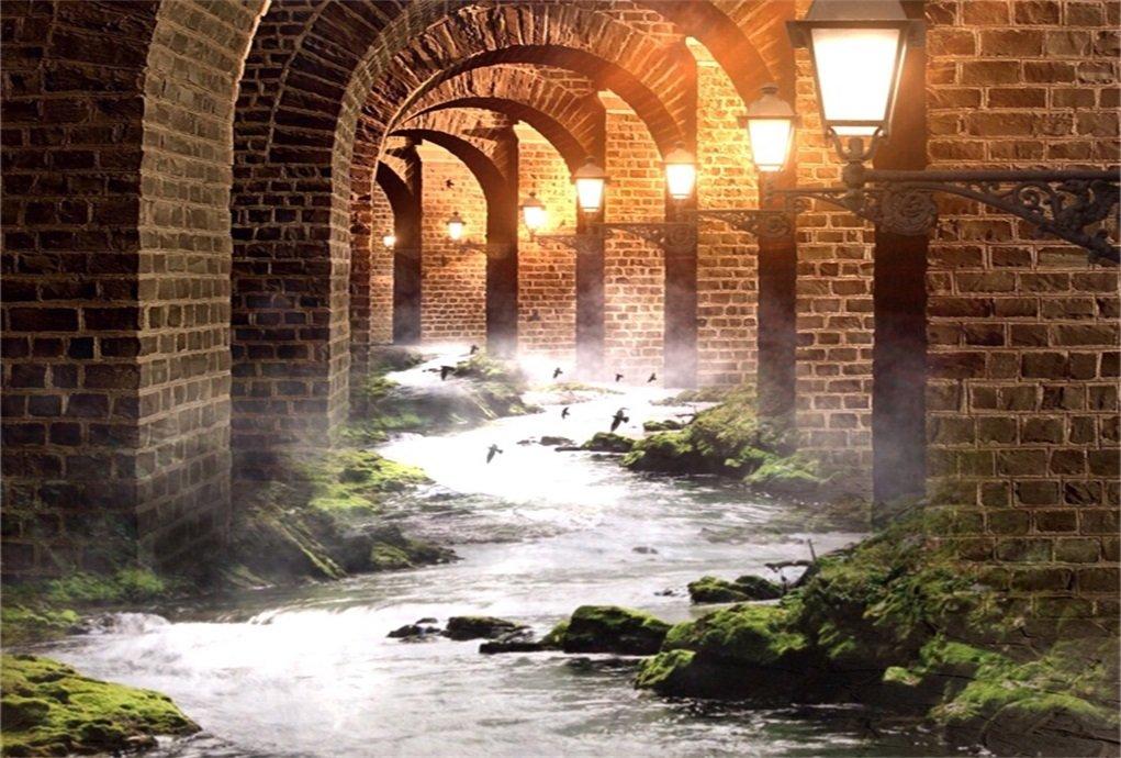 AOFOTO 8x6フィート ビンテージアーチの橋の口金 レトロなランプの背景 写真 ブルック 流れるような水の壁の背景 写真スタジオ小道具 恋人 大人 女の子 男の子 芸術的 ポートレート 壁紙   B077K6ZFZB