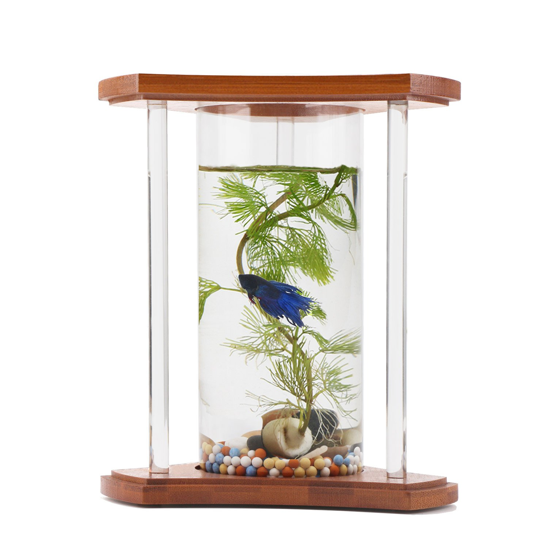 Fish aquarium rates in delhi - Segarty Betta Fish Tank Unique Design Small Fish Bowl With Bamboo Shelf 360 Degree