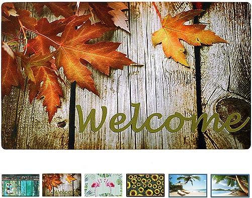 Welcome Doormat Front Door Mat, Rubber Back Non Slip Door Mat Entrance Rug Shoe Scraper 17 x 29 , Low-Profile Printing Mats for Entry, Garage, Patio, High Traffic Areas