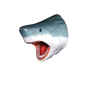 Design Toscano White Shark Wall Mount Trophy Sculpture 30 Inch grey