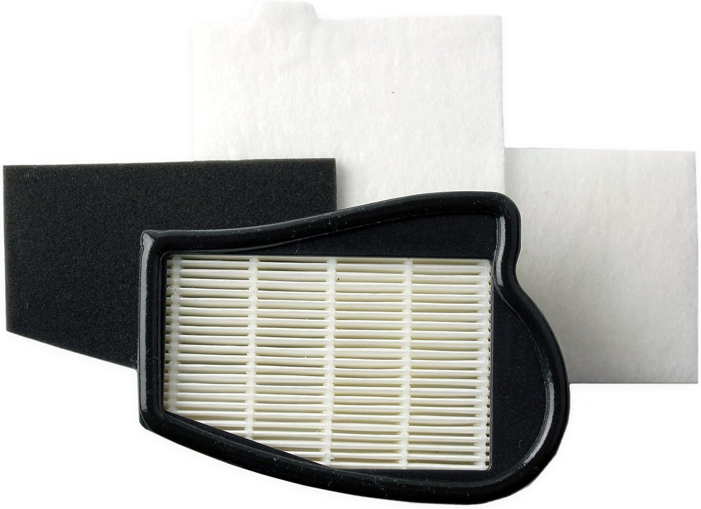 AEG AEF 06 - Sistema de filtros lavables HEPA H-12, 2 filtros para ...