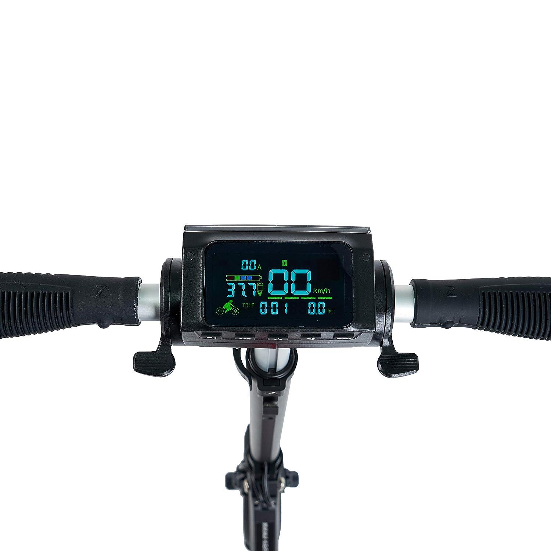 ECOXTREM UrbanRun - Patinete eléctrico Dos Ruedas, Plegable y Ligero con luz LED Frontal, Pantalla LCD, Motor 350W, Velocidad hasta 35Km/h. Diseño ...