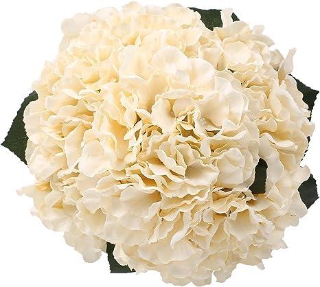 Amazon Com Hydrangea Silk Flowers Champagne 5 Heads Soledi Artificial Flower Arrangements Bunch Bridal Bouquet Wedding Bouquet For Home Garden Party Decoration Home Decor Home Kitchen