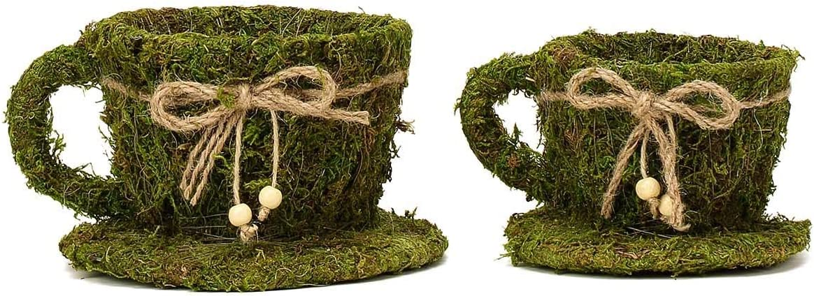 Preserved Moss Teacup Planter Box with Natural Braided Twine Bow 5 /& 4.5 Efavormart Set of 2