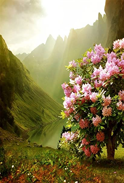 AOFOTO 3x5ft Beautiful Mountain Backdrop For Photography Pretty Flower Tree Lake Natural Scenery Background Outdoor Travel