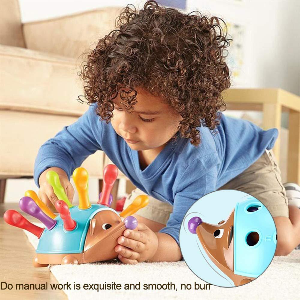 Fr/üherziehung Aufkl/ärung Spielzeug Feinmotorik /& Farbwahrnehmung Entwicklung Spielzeug Kinderkonzentrationstraining Hand-Auge-Koordination Lernspielzeug Igel einf/ügen Spielzeug f/ür Kinder