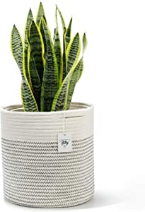"""POTEY 700201 Cotton Woven Rope Plant Basket Modern Indoor Decorative Planter Up to 10 Inch Pot Woven Storage Organizer with Handles Home Decor, 11"""" x 11"""", Cream White and Black Stitching"""