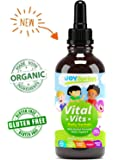 Organic Vitamins for Kids + Immune System Booster for Kids, Best Liquid Immune System Support for Children with Iron