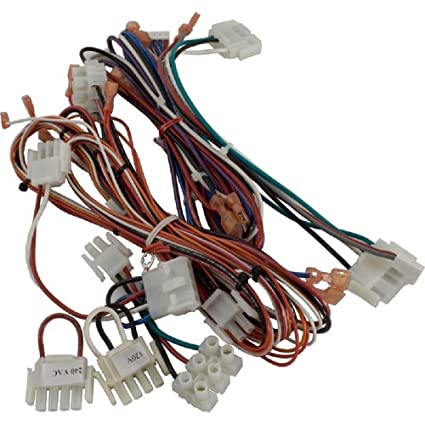 Amazon.com : Hayward FDXLWHA1930 FD Complete Wiring Harness ... on