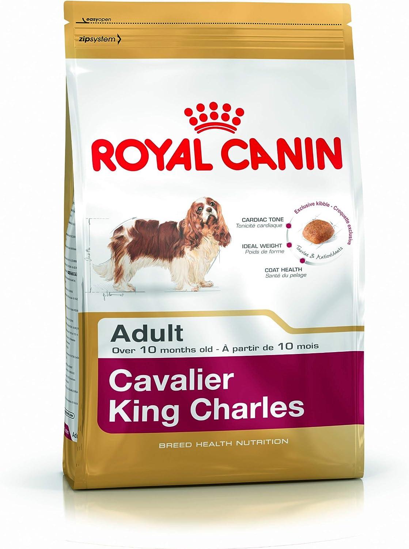 Royal Canin Comida para perros Cavalier King Charles Adult 1.5 Kg