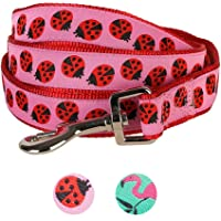 Blueberry Pet Durable Pink Webbing Ladybug Designer Dog Lead 150 cm x 1.5cm, Small, Basic Nylon Leads for Dogs