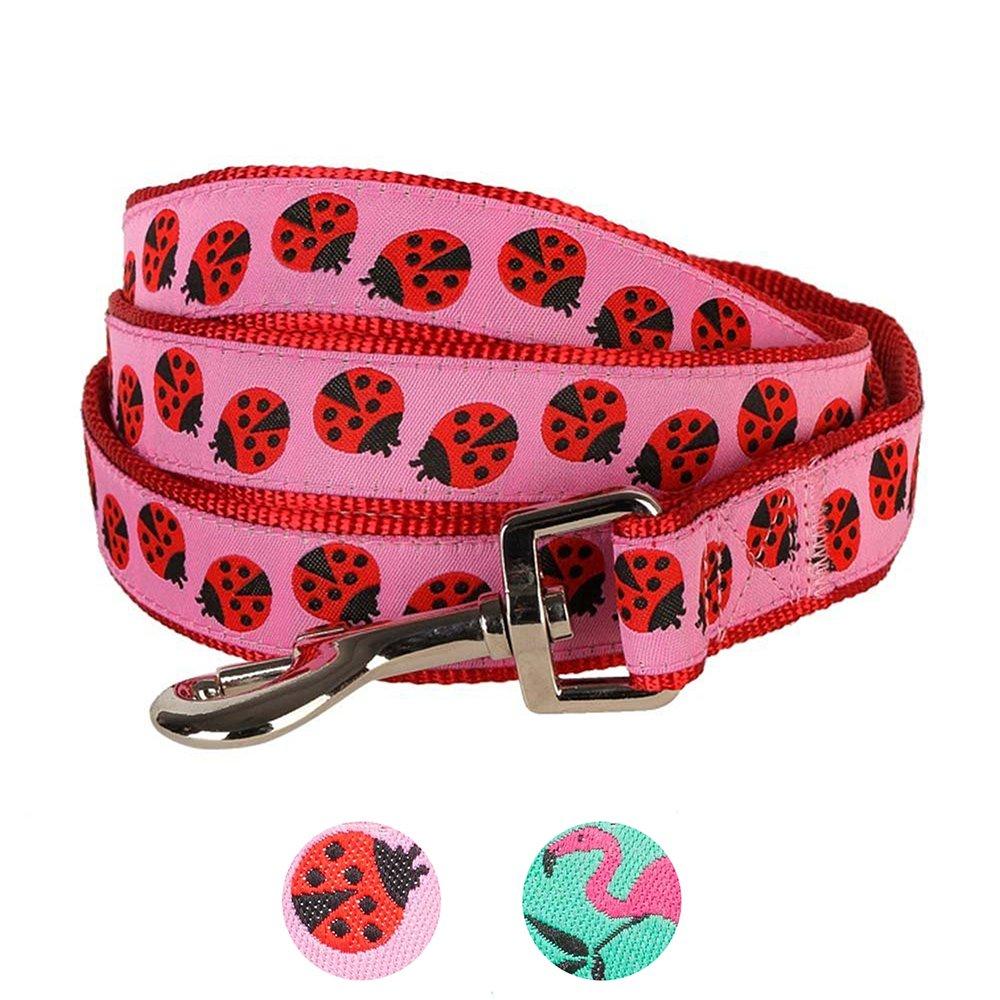 Blueberry Pet Durable Pink Webbing Ladybug Designer Dog Leash 5 ft x 3/4'', Medium, Basic Nylon Leashes for Dogs