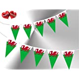 Welsh Patriotic Themed Bunting Banner 15 flags of Wales With Y Ddraig Goch Red D