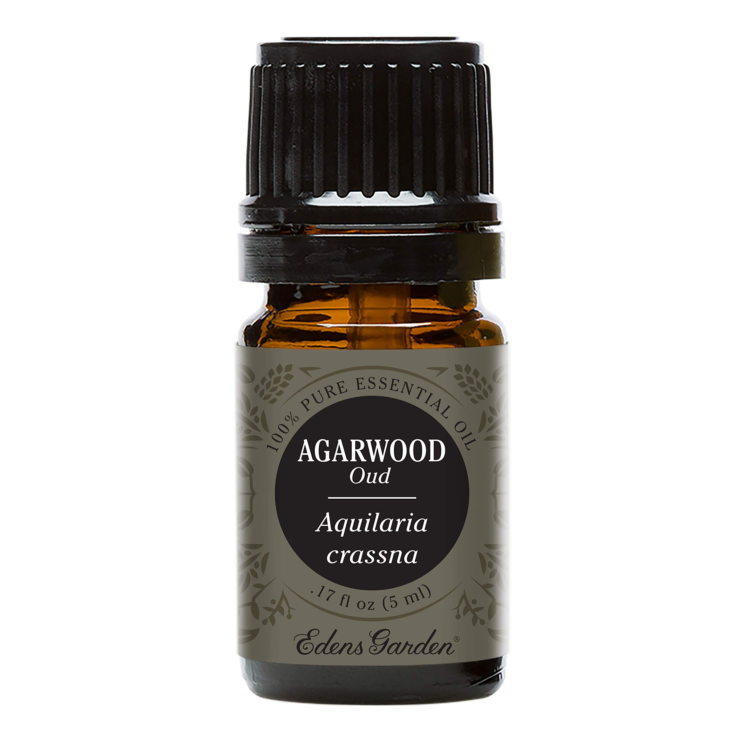 Edens Garden Agarwood (Oud) Essential Oil, 100% Pure Therapeutic Grade (Highest Quality Aromatherapy Oils- Anxiety & Stress), 5 ml by Edens Garden
