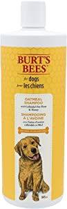 Burt's Bees All Natural Oatmeal Shampoo & Conditioner for Dogs | Made with Colloidal Oat Flour and Honey | Moisturizes, Soothes & Softens Dry Skin Naturally | Cruelty Free, Sulfate & Paraben Free