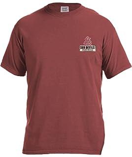 66c851d34762e Image One NCAA Vintage Baseball Flag Comfort Color Short Sleeve T-Shirt