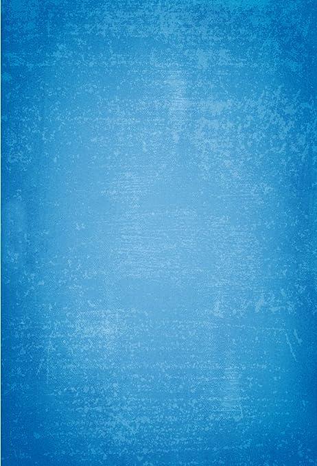 Ofila Vinile 15 X 21 M Fotografia Sfondo A Tinta Unita Blu Wall