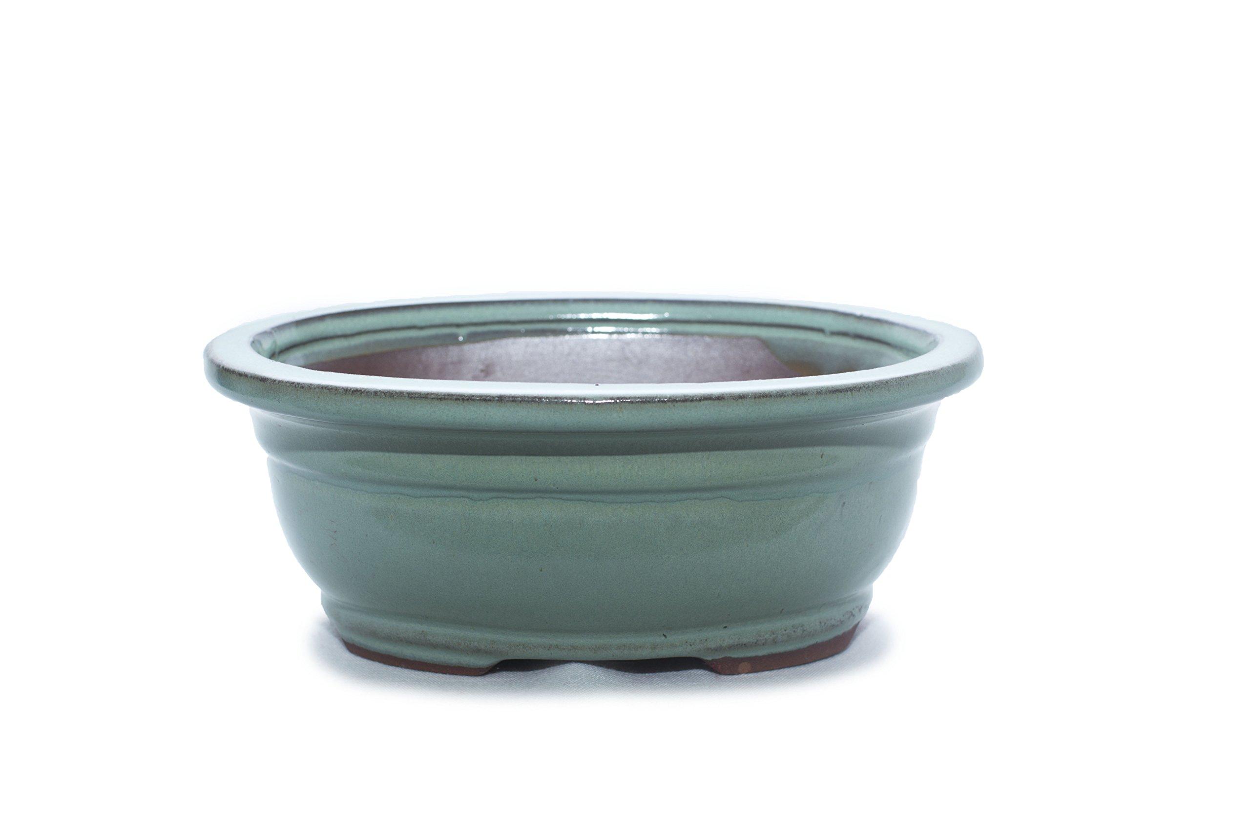 Bonsai Tree Pot 4 Inch Light blue Glazed Rectangle Shape