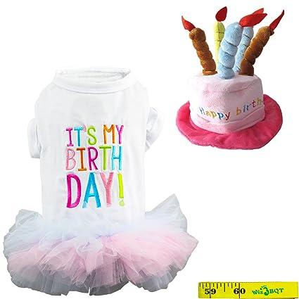 Wiz BBQT Dog Cat Pet Happy Birthday Hat And Its My Princess Skirt Tutu Dress